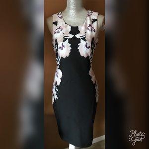 Calvin Klein Floral Print Scuba Dress- ChicEwe